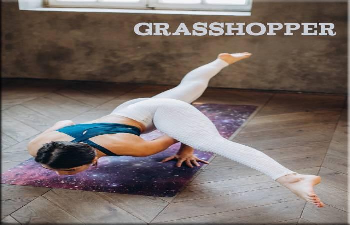 Grasshopper Posture